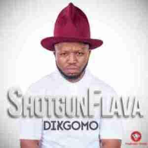 ShotGun Flava - Dikgomu ft. Pyrobeats (Official Version)